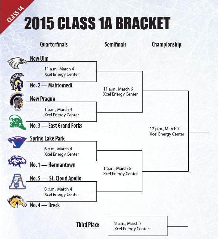 Mhm 2015 Boys State High School Hockey Tournament Central